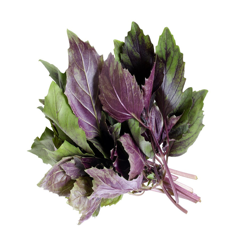 Organic Purple Basil