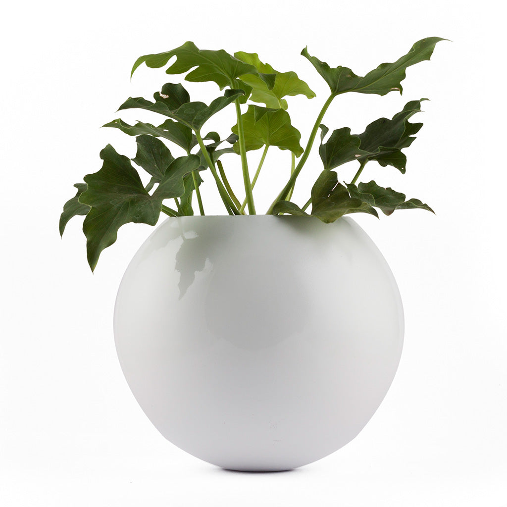 Circle of Life White FRP Planter