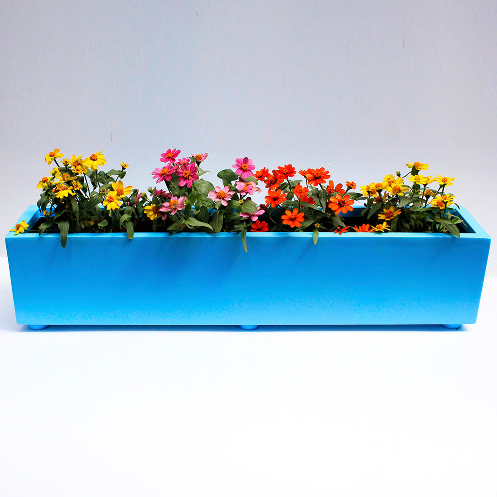 Draco Blue FRP Planter