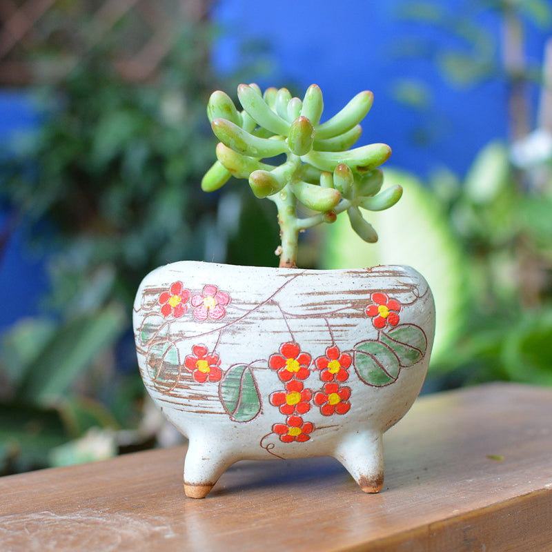 Etched in Bloom Ceramic Pot