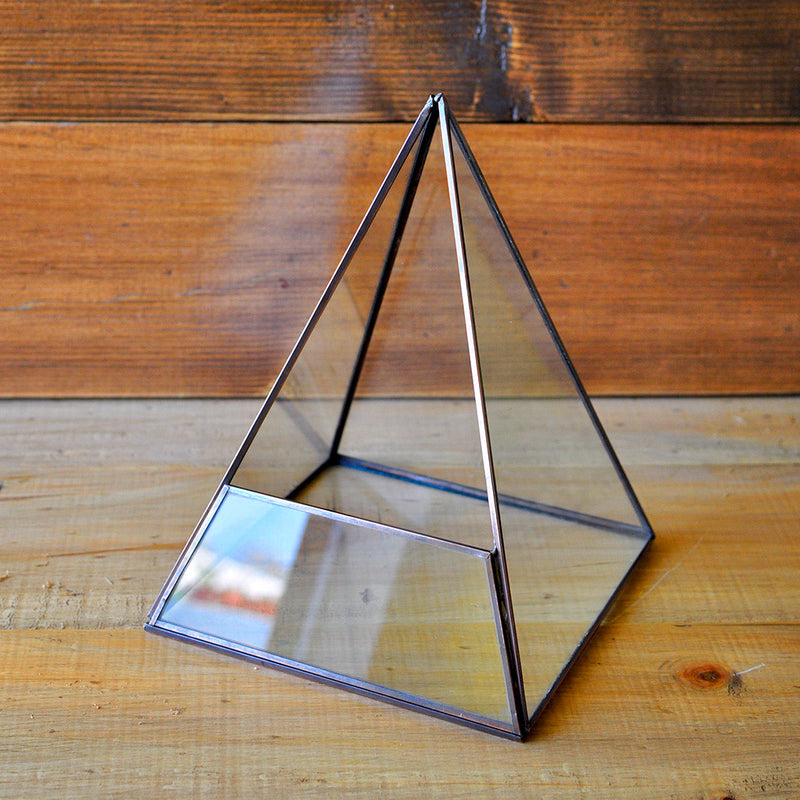 Fire On A Hill Terrarium Kit Decor myBageecha - myBageecha