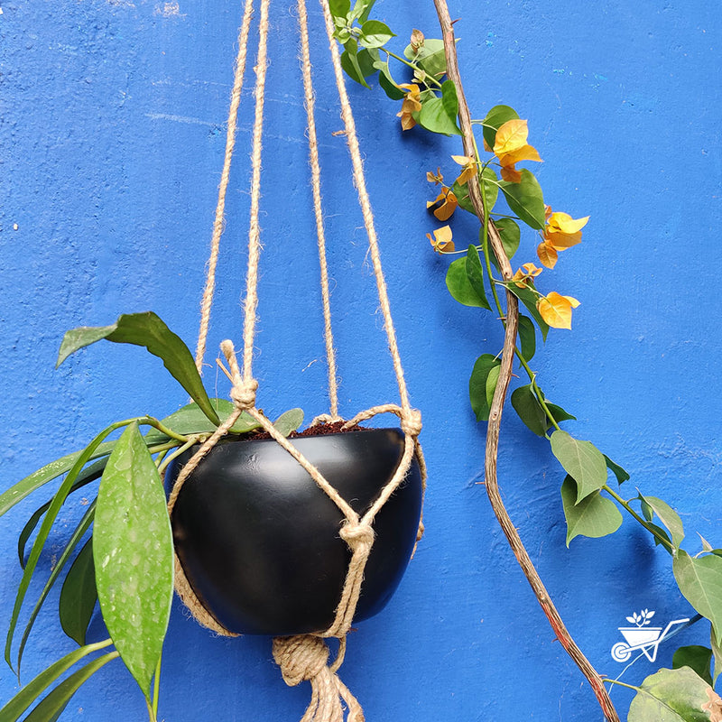 Galaxial Black Hanging Metal Pot with Rope