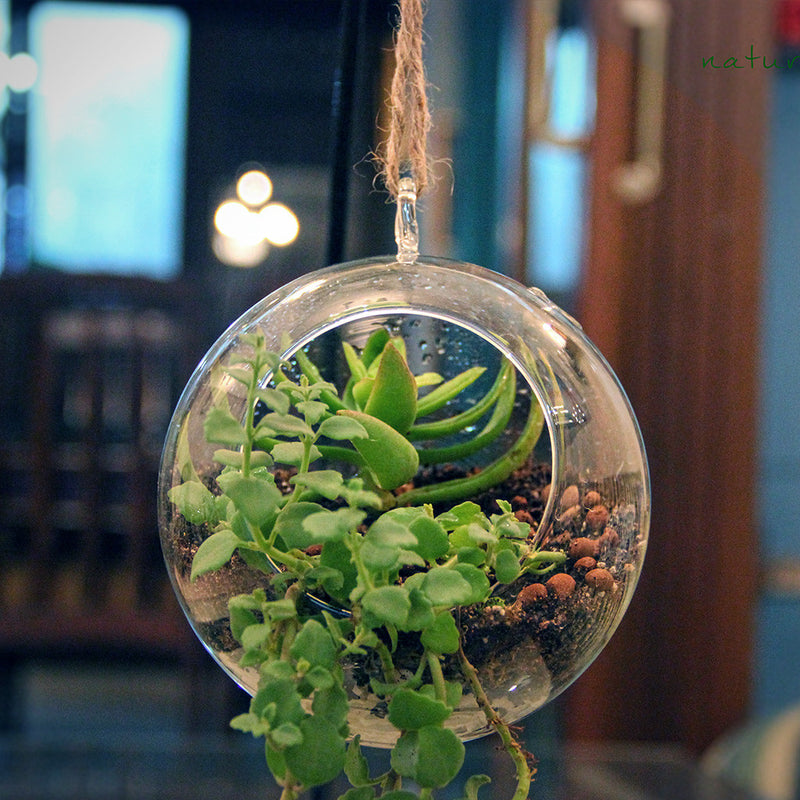 Medium Round Globe Hanging Planter Garden Essentials myBageecha - myBageecha