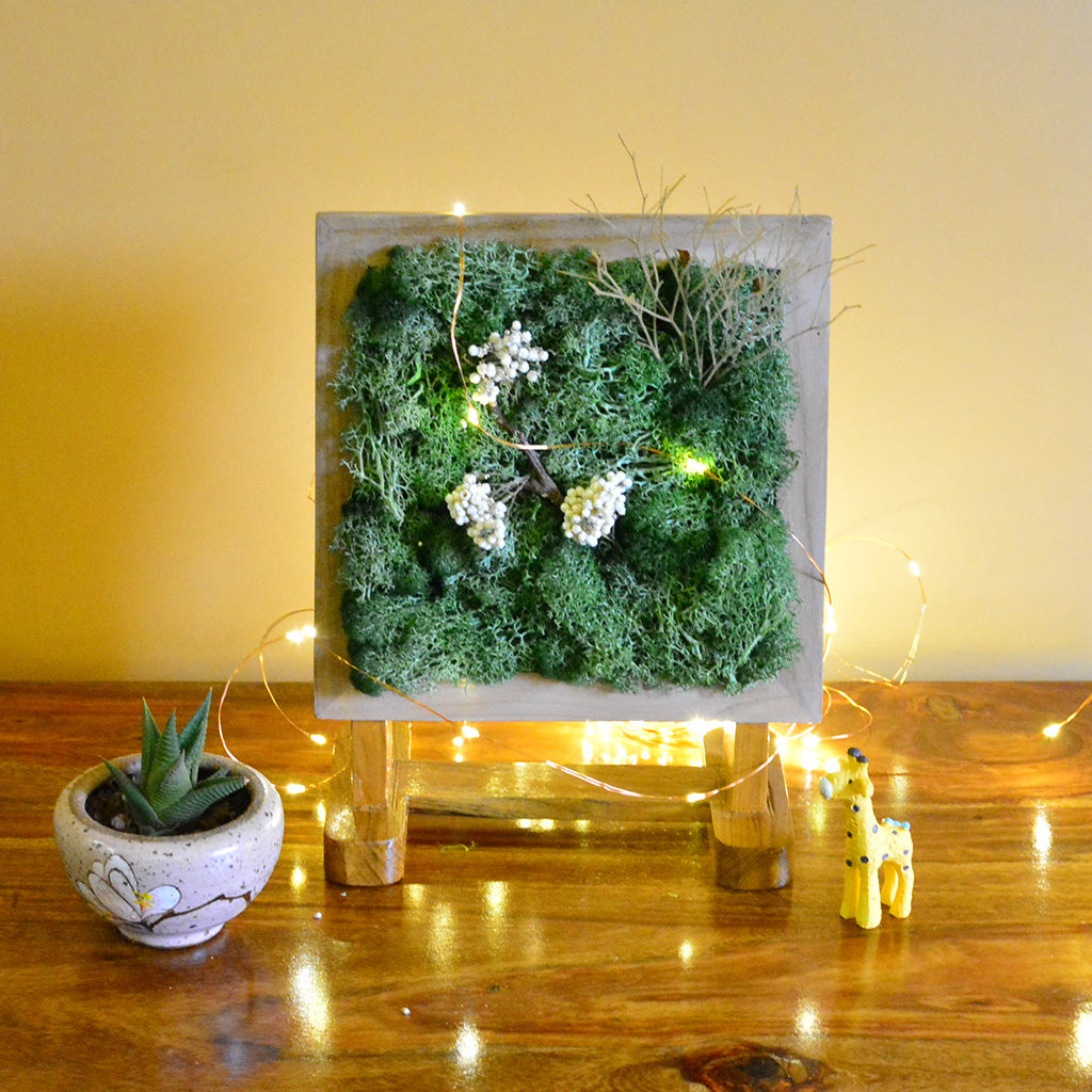 An Olive Grove Tabletop Moss Frame with Stand