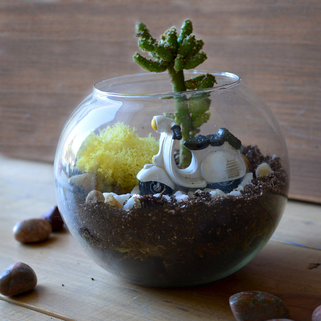 Products Page 31 Mybageecha # Terrarium Dangle