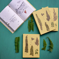 Something about Ferns Pressed Flower Diary