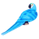 Blue Parrot Decor