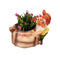Gnome/Dwarf Planter with Mini Snail Planter