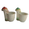 (Set of 2) Planter with 3 Mushroom Planter