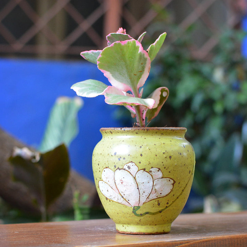 Murky Bloom Ceramic Pot