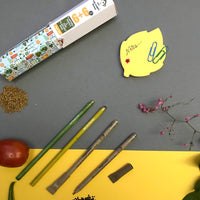 Magicseeds Plantable Pens & Pencils (Pack of 12)