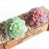 Artificial Dotted Rosette Succulent Imitation Plant