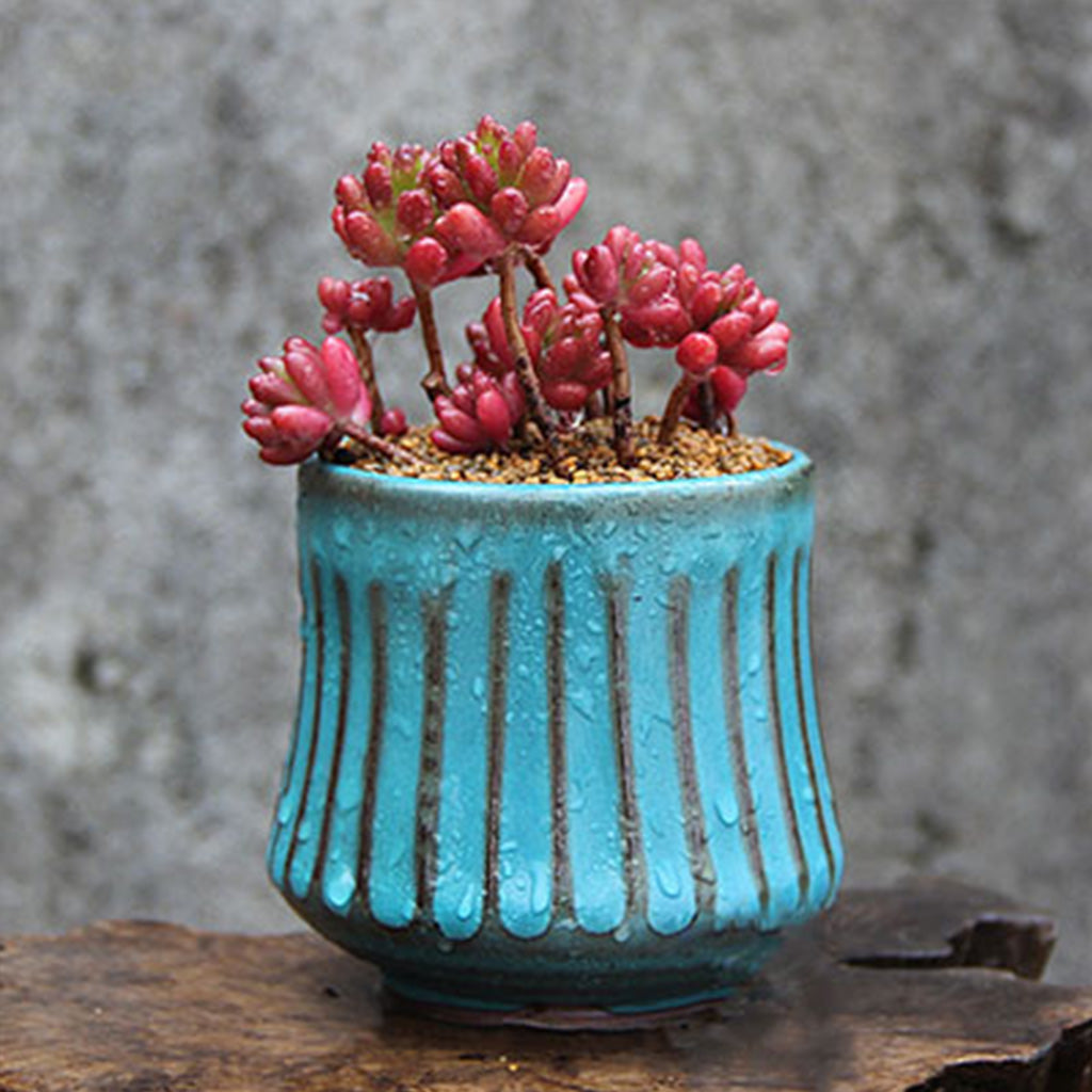 Stripe in the Sea Ceramic Pot