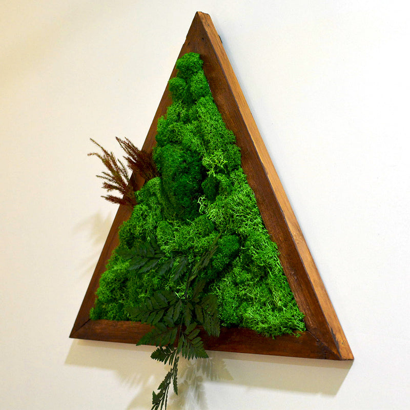 Triad Wilderness Moss Frame with Dark Wood