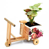 Wooden White Rose Tricycle Planter Garden Essentials myBageecha - myBageecha