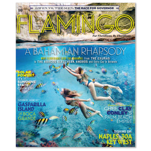Flamingo Volume 10
