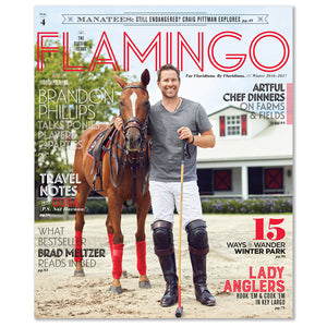 Flamingo Volume 04