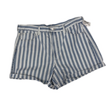 American Eagle Shorts Size 15/16