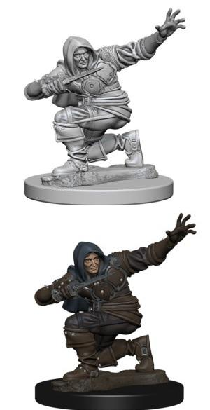 Pathfinder : Deep Cuts Unpainted Miniatures - Male Human Rogue