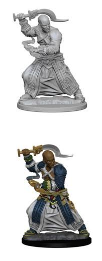 Pathfinder : Deep Cuts Unpainted Miniatures - Male Human Monk