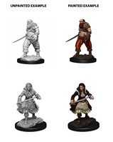 Wizkids : Deep Cuts - Pirates