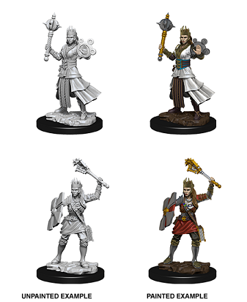 Dungeons & Dragons : Nolzur's Marvelous Unpainted Miniatures - Female Human Cleric