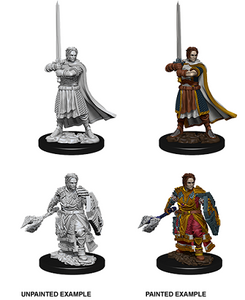 Dungeons & Dragons: Nolzur's Marvelous Unpainted Miniatures - Male Human Cleric