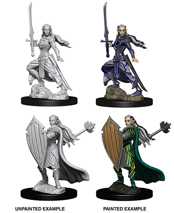 Dungeons & Dragons : Nolzur's Marvelous Unpainted Miniatures - Female Elf Paladin