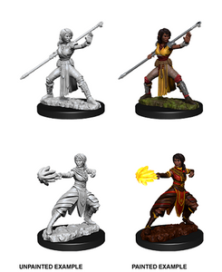 Dungeons & Dragons: Nolzur's Marvelous Unpainted Miniatures - Female Half-Elf Monk