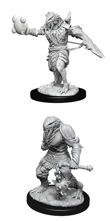 Dungeons & Dragons Nolzur's Marvelous Miniatures Wv 11 - Male Dragonborn Paladin