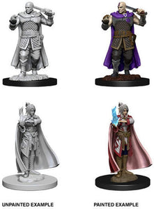 Dungeons & Dragons: Nolzur's Marvelous Unpainted Miniatures - Human Ranger & Moon Elf