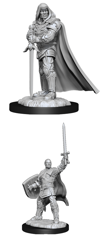 Dungeons & Dragons : Nolzur's Marvelous Unpainted Miniatures - Human Paladin Male