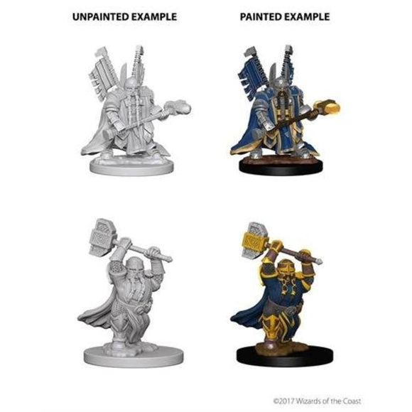 Dungeons & Dragons : Nolzur's Marvelous Unpainted Miniatures - Dwarf Male Paladin