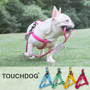 Touch Dog Harness & Lead SET