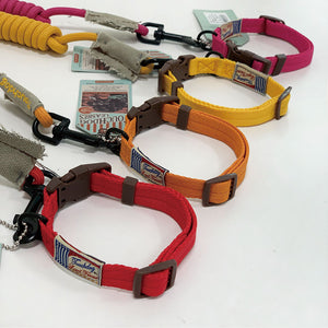 Touch Dog Leash & Lead SET