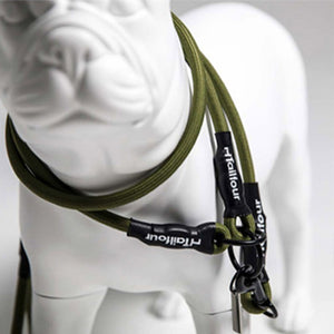 Day walk L-Harness & Lead Set