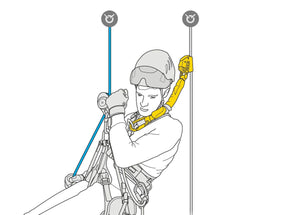 Petzl-ASAP'SORBER international version