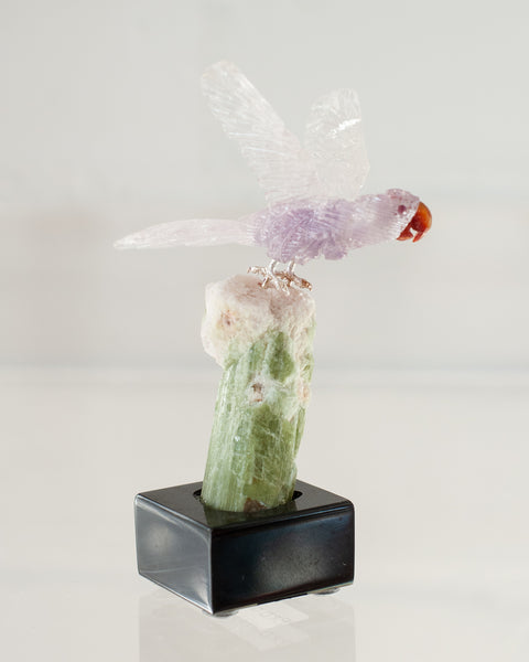 AMETHYST MACAW ON TOURMALINE & QUARTZ BASE