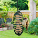 Hanging-Spiral-Bird-Feeder-Squirrel-Proof - ShoppyBay.com