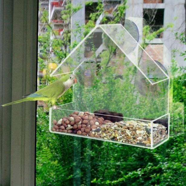 Clear Viewing Bird Feeder - Shoppybay.com