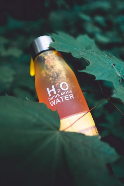 H²O Fruit Infusion Water Bottle