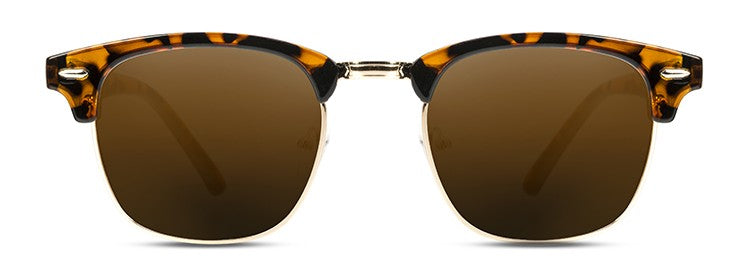 Steam Glossy-Tortoise Brown Polarized