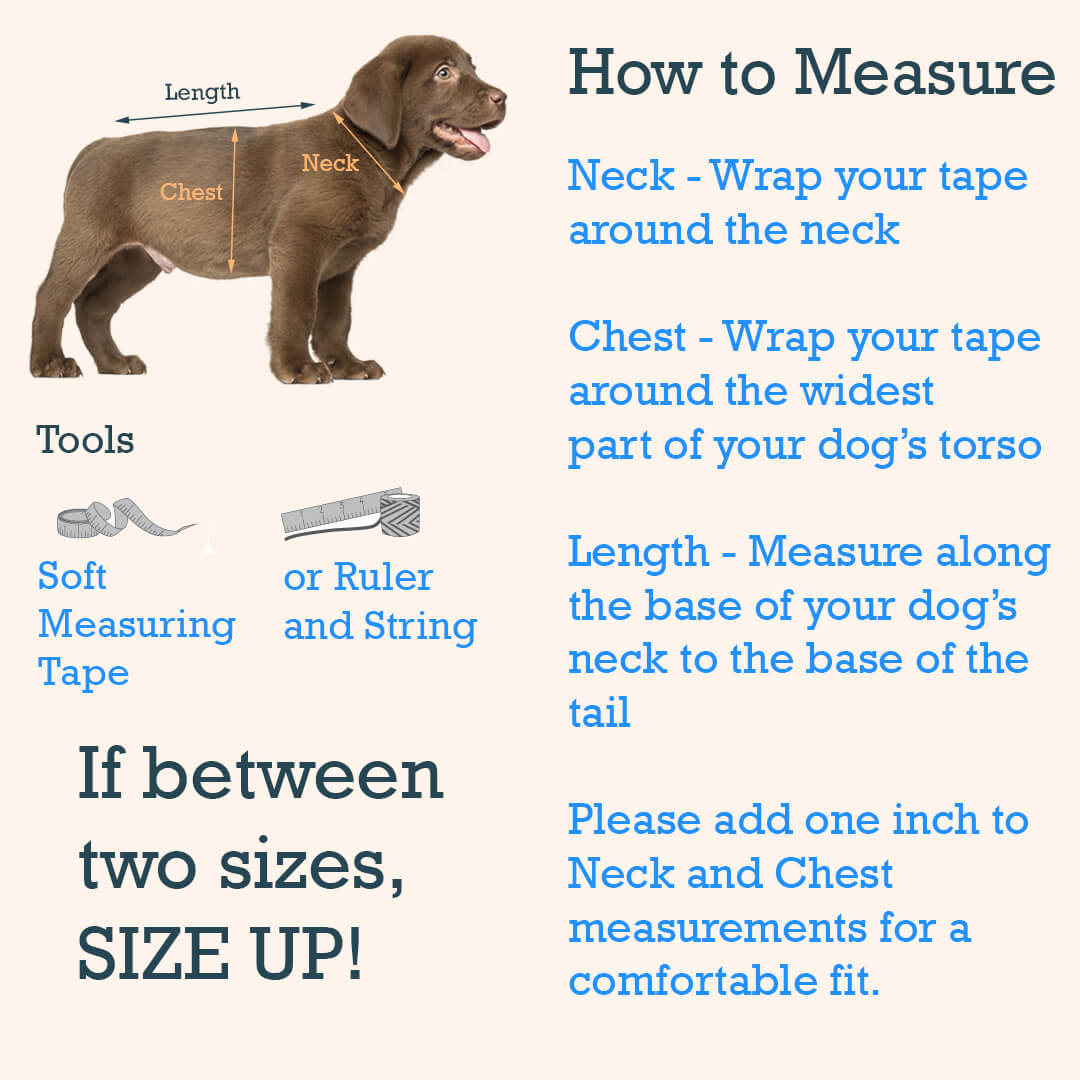 measure size guide fitting measuring