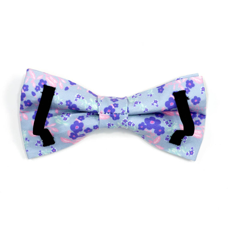 Cerulean Violets Dog Bow Tie - Waggy Pups