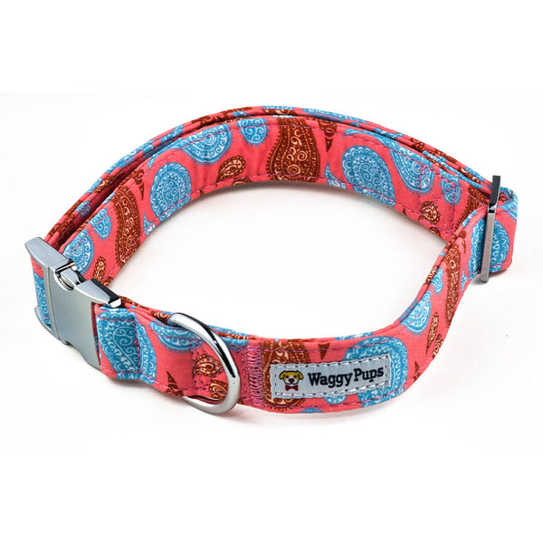 Paisley Taffy Dog Collar - Waggy Pups
