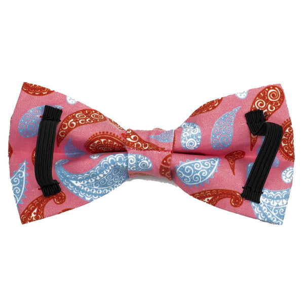 Paisley Taffy Dog Bow Tie - Waggy Pups
