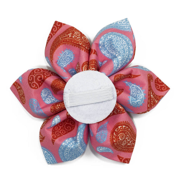 Paisley Taffy Dog Flower - Waggy Pups
