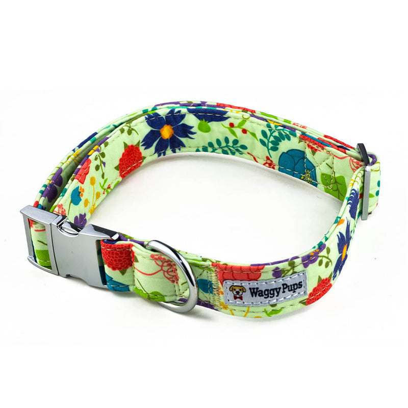 Vibrant Bouquet Dog Collar - Waggy Pups