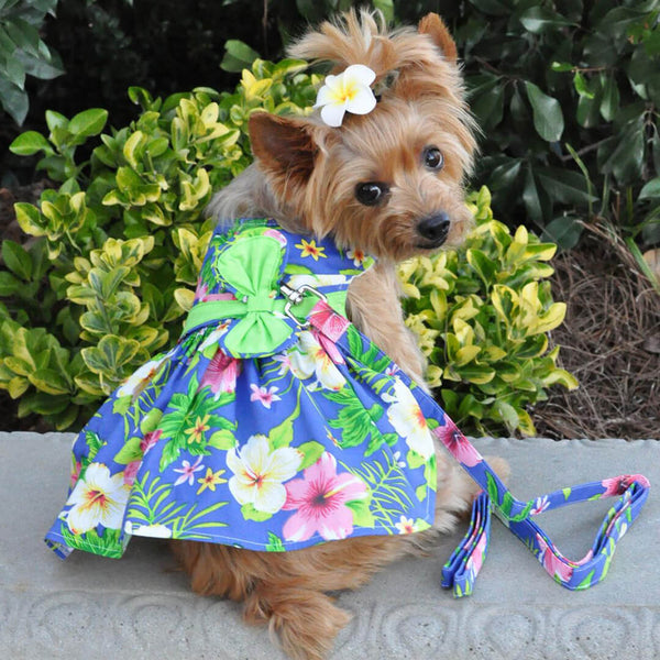 Blue Hibiscus Dog Dress with Matching Leash