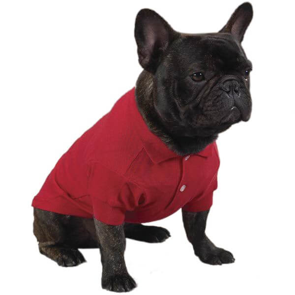 Tomato Red Dog Polo Shirt
